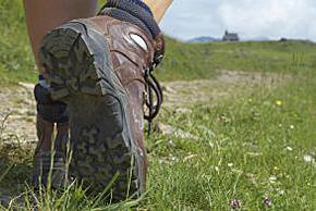 willingen-wandelen